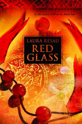 Multicultural young adult fiction